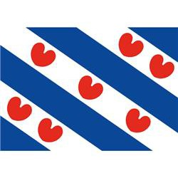 Vlag Friesland 70 X 100 cm
