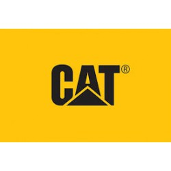 Cat filter 480-4313